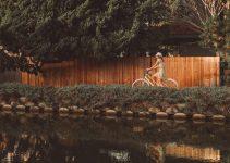 Schwinn Destiny girls cruiser bike review